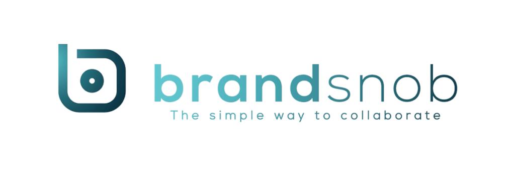 Wolf Global_Instagram Influencer Marketing Platforms_BrandSnob