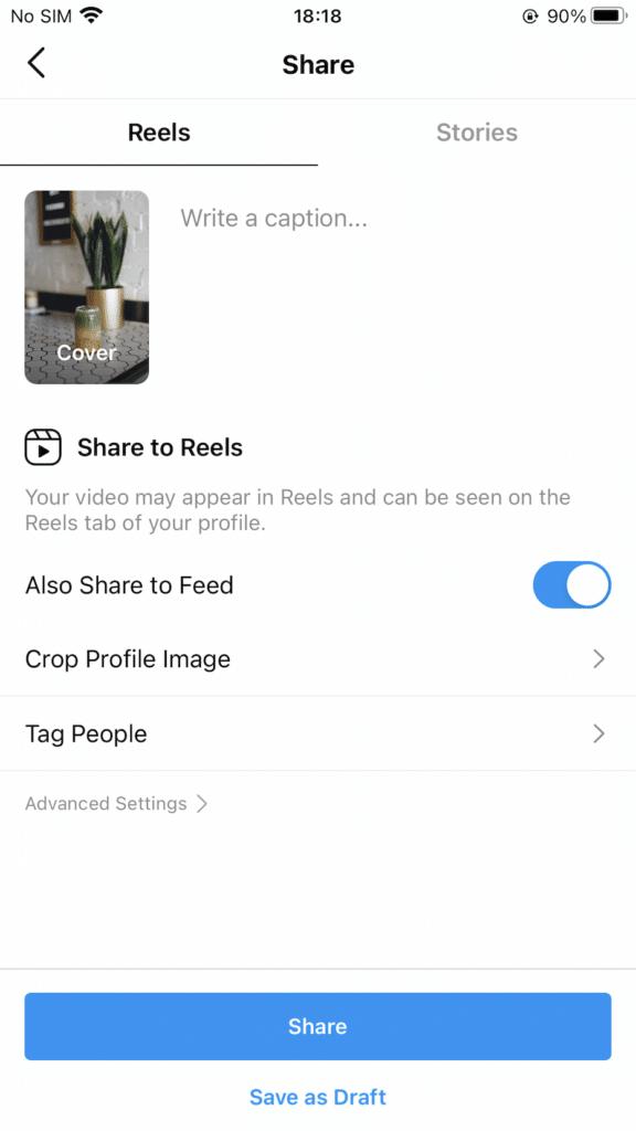 Wolf Global_Instagram Reels 101_14