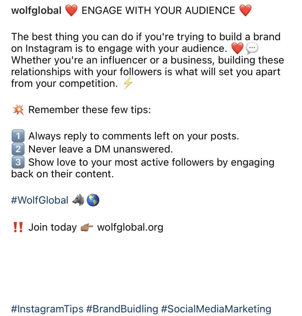 Wolf Global_Share Links on Instagram_Short Link in Caption